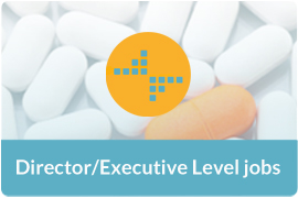 Director/Executive Level Jobs