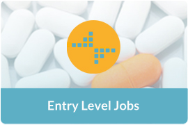 Entry Level Jobs