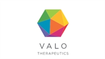 VALO THERAPEUTICS APPOINTS MICHAEL STEIN AS CHIEF EXECUTIVE OFFICER